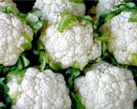This cruciferous vegetable kills cancer cells, boosts heart health, slows down cognitive decline and activates detoxification enzymes (and, no, it's not broccoli!)