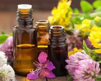 Five anti-ageing natural oils for your skin and hair
