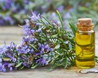 Northumbria University researchers reveal the best essential oil for boosting your memory (Bonus: It banishes cellulite and helps you live longer)